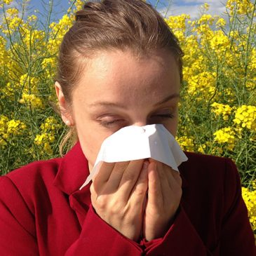 Guerra al polen: consejos para combatir su alergia