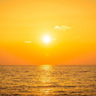 Alergia al sol y la luz: Fotodermatosis