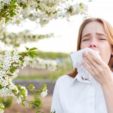 Primavera  atípica: consejos para sobrellevar el polen este año